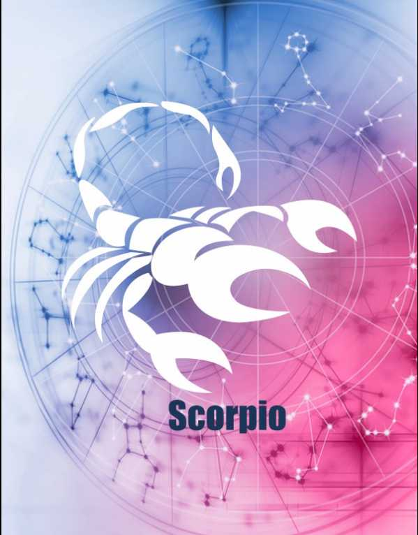 8) Scorpio